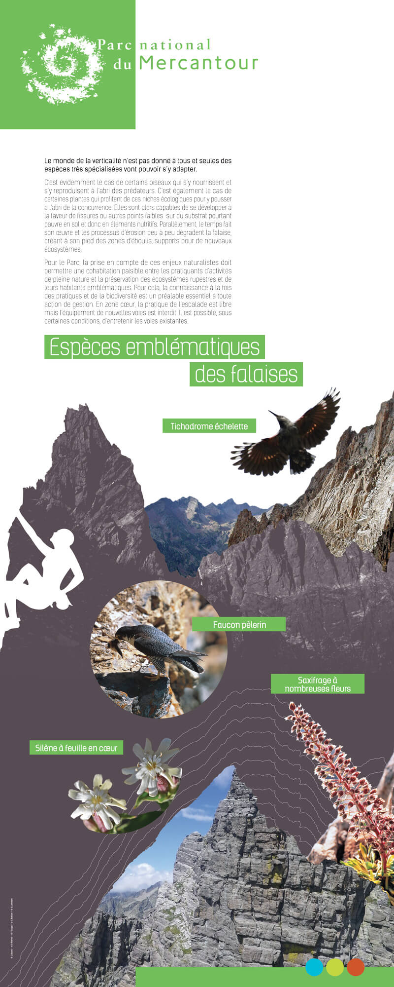 Panneau d'exposition falaise, Parc National du Mercantour