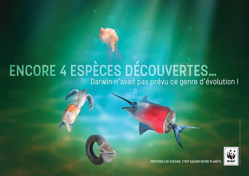 Campagne publicitaire WWF France, graphisme engagé