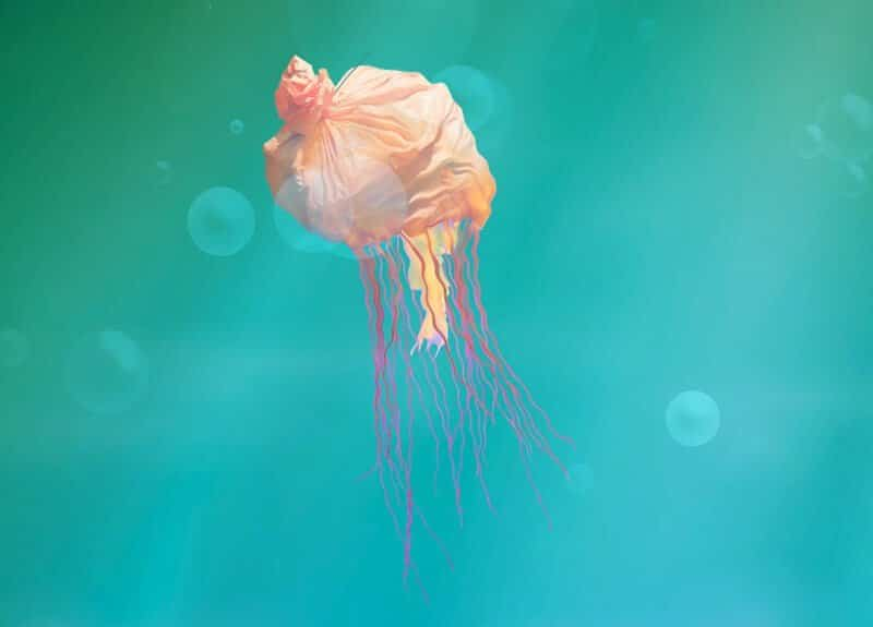 Animal WWF sac méduse, mi-marin mi-déchet